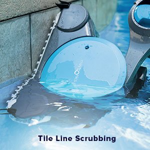 Dolphin Robotic Pool Cleaner Reviews - Walls and Stair cleaning
